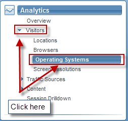 Select Analytics -> Visitors -> Operating Systems from the menu