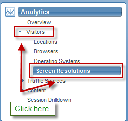 Select Analytics -> Visitors -> Screen Resolutions from the menu